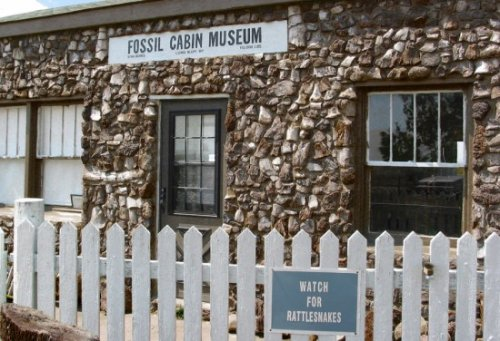 Дом-музей из костей динозавров