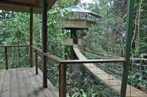 Коста-риканские дома на деревьях