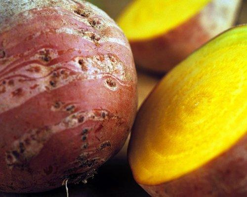 Необычные  гибридные сорта из овощей и фруктов
