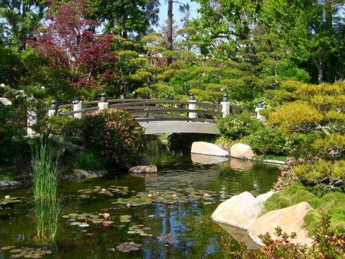 Очарование японских садов