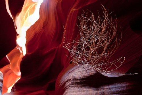 Зрелищность каньона Антилопы