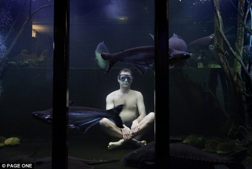 Тропическое убежище в подвале