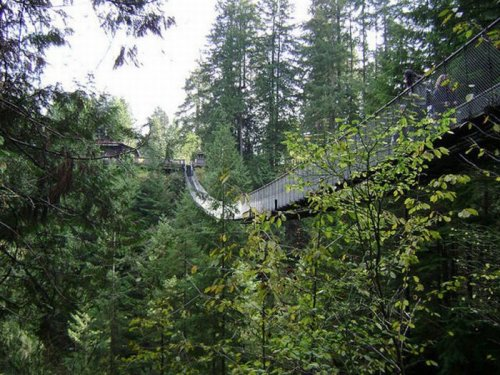 Подвесной мост над рекой
