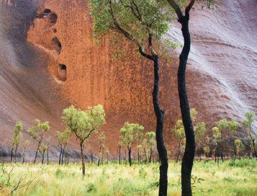 Австралийская скала Улуру