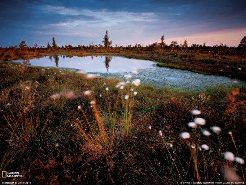 Апрельские фотографии National Geographic
