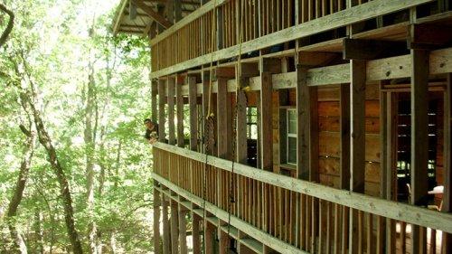 Самый большой домик на дереве