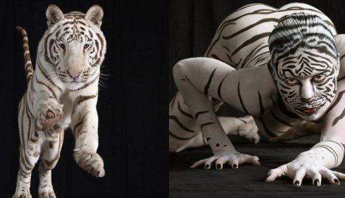 Животный боди-арт