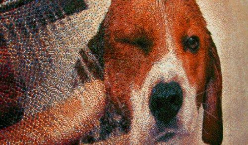 Портрет бигля в духе пуантилизма