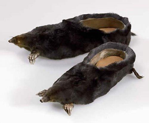 Обувь из мертвых животных от Ирис Шеферштейн