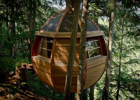 Дом, свисающий с дерева