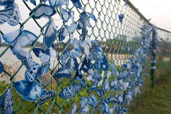 Магнитные цианотипические инсталляции бабочек от Таши Льюис (Tasha Lewis)