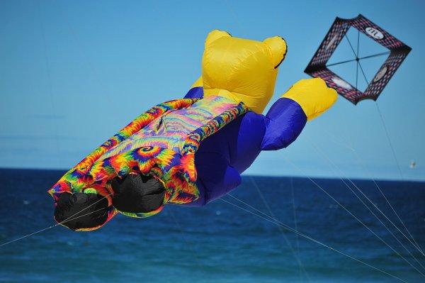 Поразительные воздушные змеи Фестиваля Ветров, прошедшего на Бонди Бич (Bondi Beach)