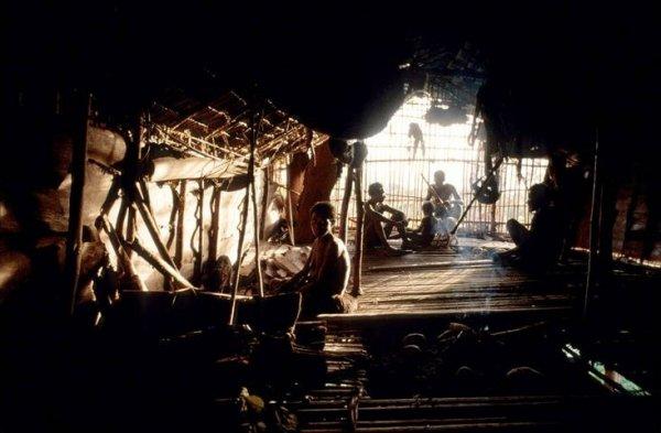 Дома на деревьях племени Коровай в Новой Гвинее