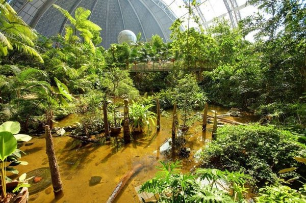 Тропический остров-курорт – самый большой в мире  крытый тропический лес