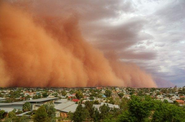 14 Захватывающих фотографий пыльных бурь