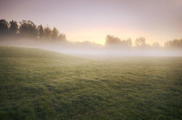 Природа через объектив фотокамеры Микко Лагерстедта (36 фото)