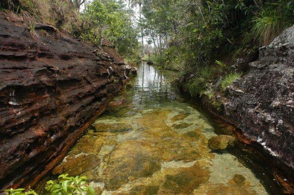 Река пяти цветов Каньо-Кристалес – самая красивая на планете