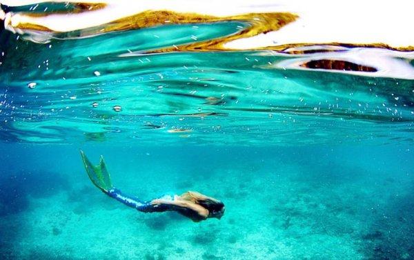Модель-русалка Линден Уолберт (10 фото)