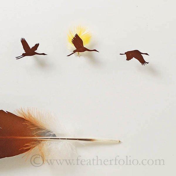 Восхитительные миниатюры из перьев, созданные Крисом Мэйнардом