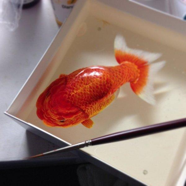 Гиперреалистичные 3D картины морских животных Кена Ли