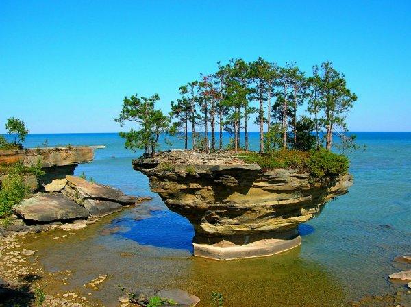 Turnip Rock – островок, возвышающийся над водой (6 фото)
