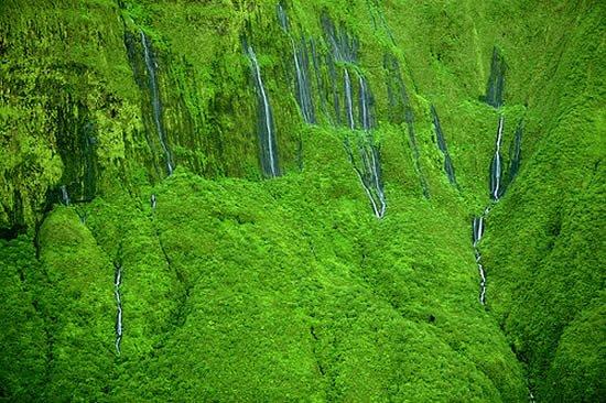 Утопающий в зелени водопад Хонокохау (7 фото)