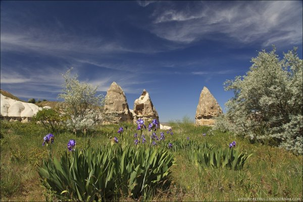 Долина пенисов в Каппадокии (9 фото)