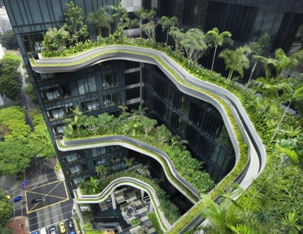 Отель-сад Park Royal – зелёный оазис Сингапура (9 фото)
