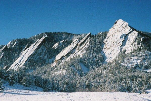 Пять горных утюгов на склоне горы Зелёная (10 фото)