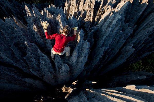 Каменные леса Мадагаскара (21 фото)