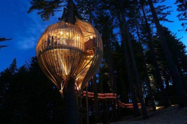 Самые необычные дома, построенные на деревьях (17 фото)