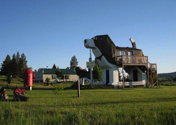 Необычный отель в виде собаки (9 фото)