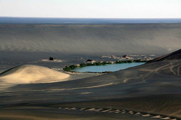 Оазис Вау-ан-Намус в кратере потухшего вулкана (12 фото)