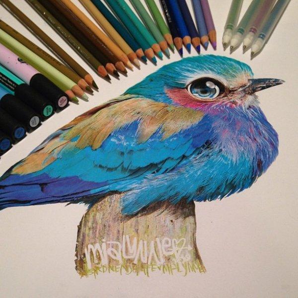 Рисунки, сделанные цветными карандашами, поражают своей реалистичностью (21 фото)