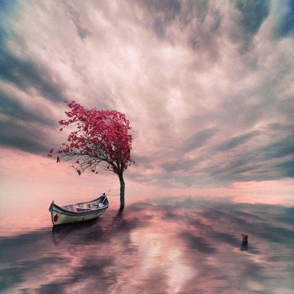 Удивительные фотоманипуляции Ионуца Караш (20 фото)