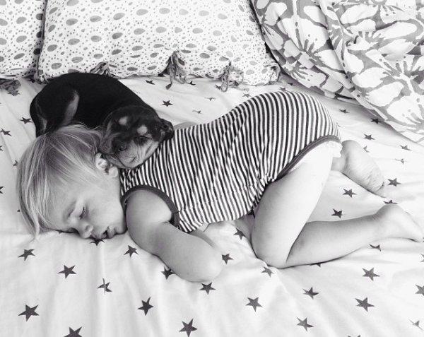 Очаровательные сони мальчик Бо и щенок Тео (15 фото)