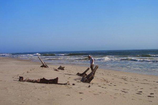 Обломки кораблекрушений на Берегу Скелетов (15 фото)