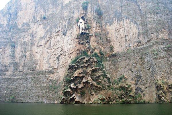 Арбол де Навидад – уникальный мексиканский водопад в форме Рождественской ёлки (6 фото + 2 видео)