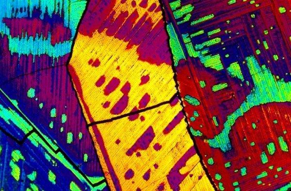 Алкоголь под микроскопом (19 фото)