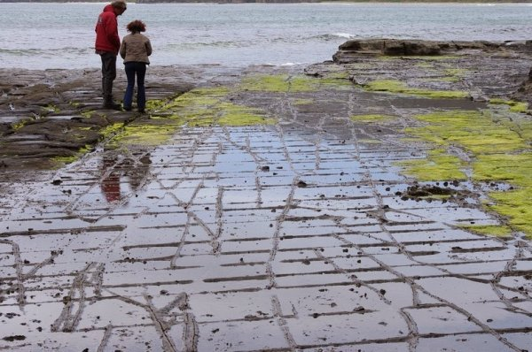 Мозаичные дороги Тасмании (7 фото)