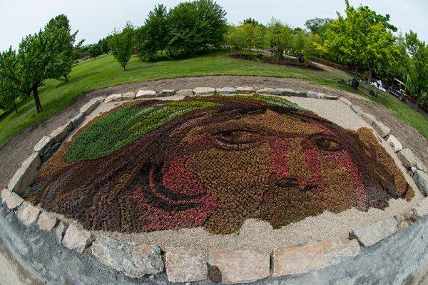 Колоссальные растительные скульптуры на Международной выставке в Монреале (24 фото)
