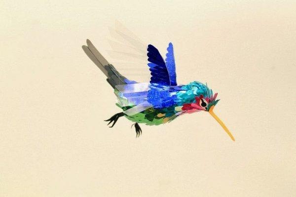 Бумажные птицы Дианы Белтран Херрера (24 фото)
