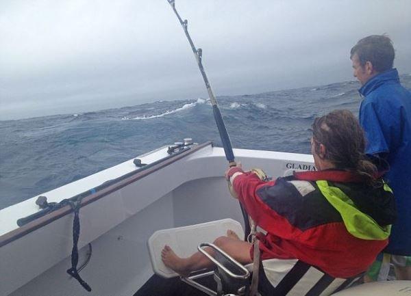 Гигантский тунец на 2.000.000 долларов (5 фото)
