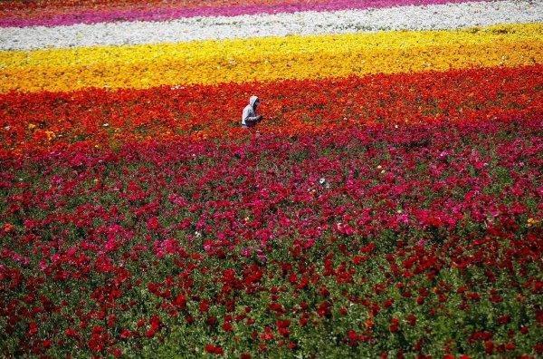 Планета Земля более прекрасна, чем вы представляете (50 фотографий)