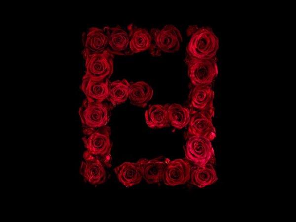 Логотипы известных брендов, выложенные из красных роз (8 фото)