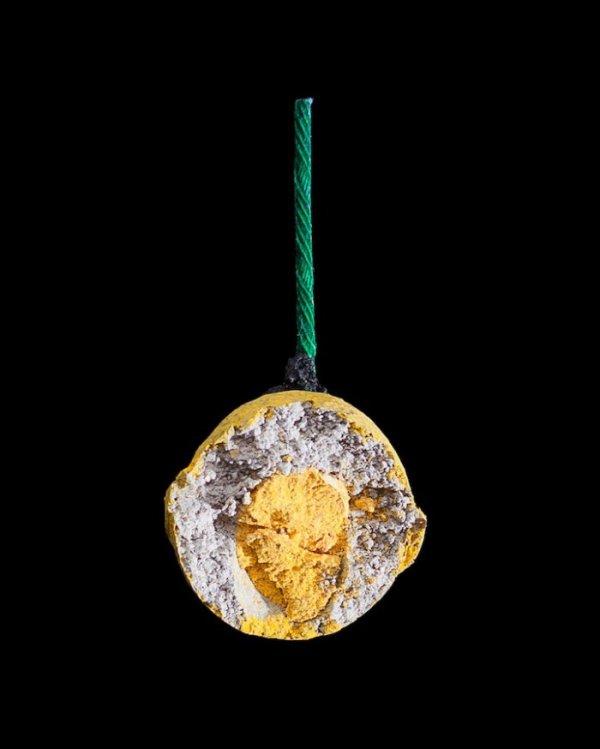 Фейерверки изнутри в фотографиях Эндрю Уэйтса (9 фото)
