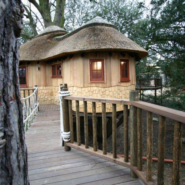 Лесной домик на дереве от Blue Forest (9 фото)