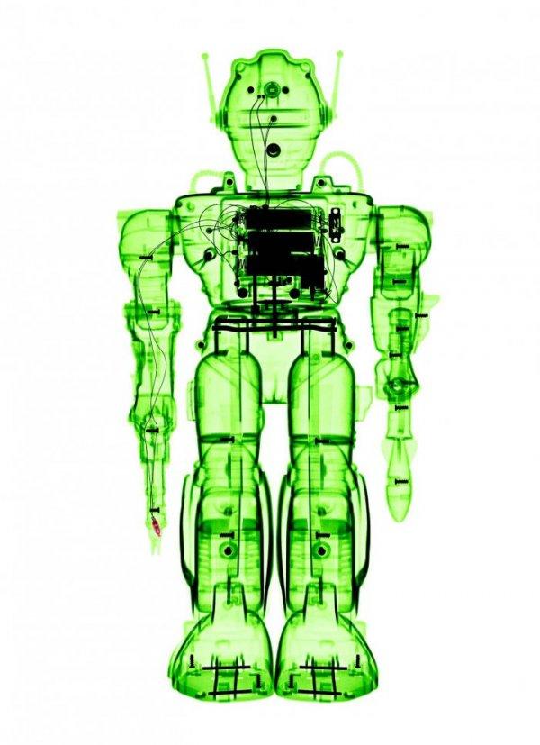 Игрушки через рентген (11 фото)