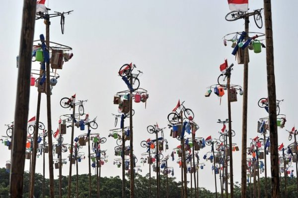 «Панжат Пинанг»: Соревнования по влезанию на смазанный жиром столб в Индонезии (16 фото)