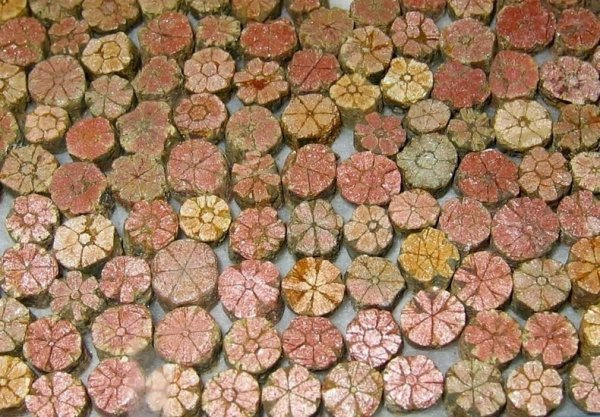 Камни в виде цветков вишни: чудо природы (4 фото)